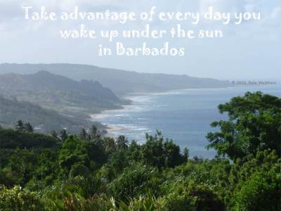 Take advantage of every day