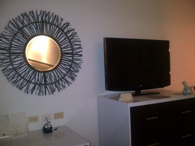 Mirror trimmed with twigs from tree branches next to the flat screen TV