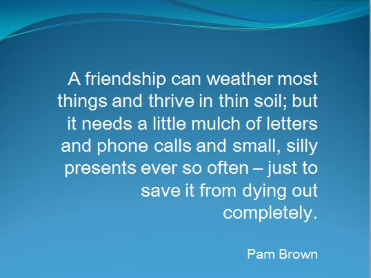 Friendship quote_Pam Brown