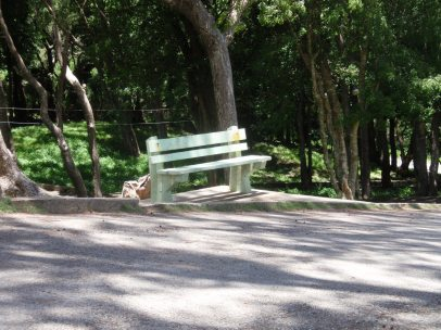 Bench at Farley Hill, Barbados; place of rest